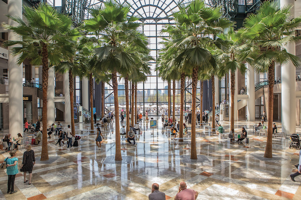 Trees inside Brookfield Place