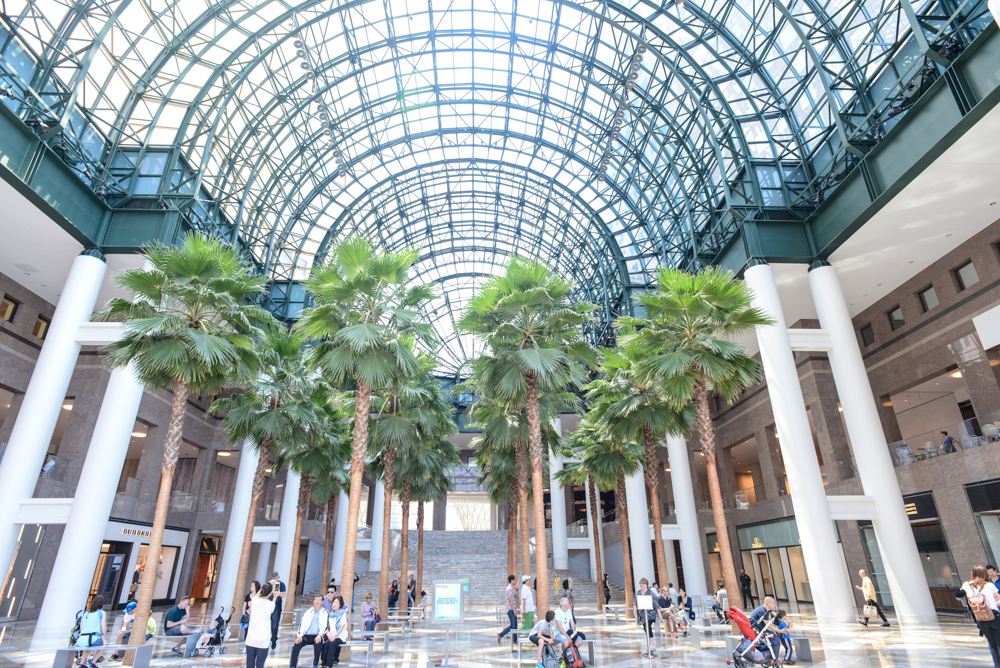 Palm trees inside of Brookfield Place